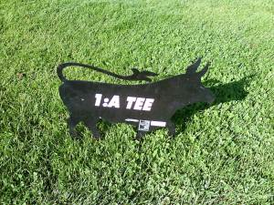 Next tee? Follow the bull!